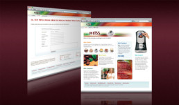 FLAVIA-Webdesign-Internetseiten